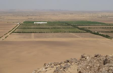 sekem-woestijn